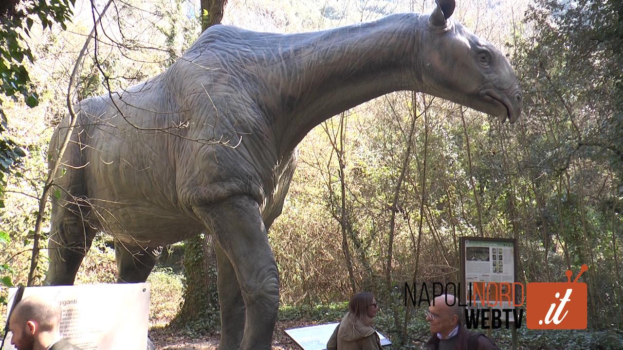 Nella riserva WWF degli Astroni in mostra i 'Dinosauri in carne ed ossa'. Video