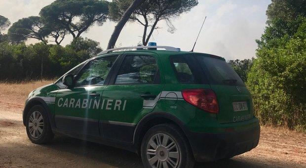 Lotta al bracconaggio a Giugliano, i carabinieri e la Lipu denunciano 6 persone