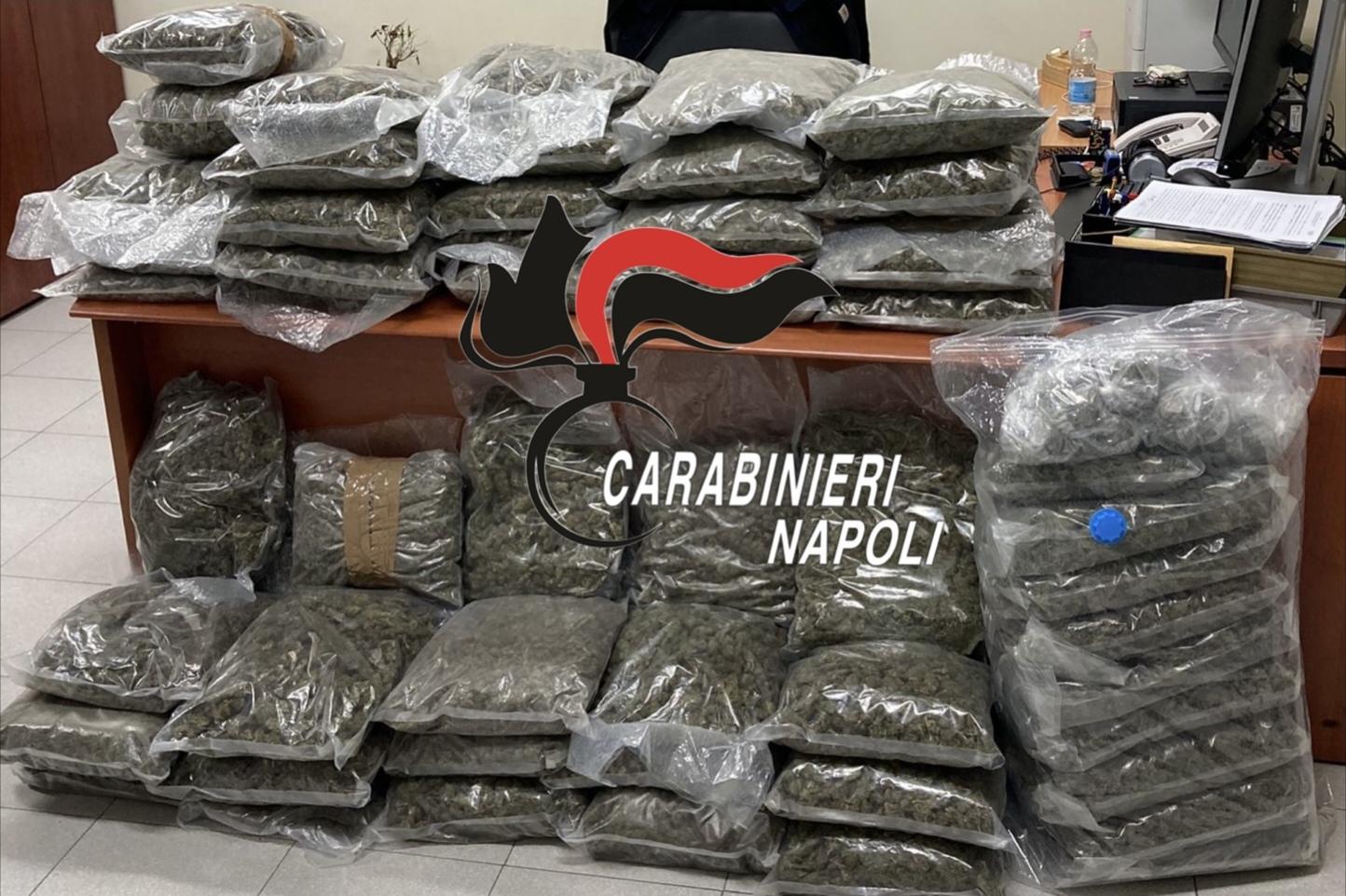 Droga, sequestrati 58 chili di marijuana: due arresti a Giugliano
